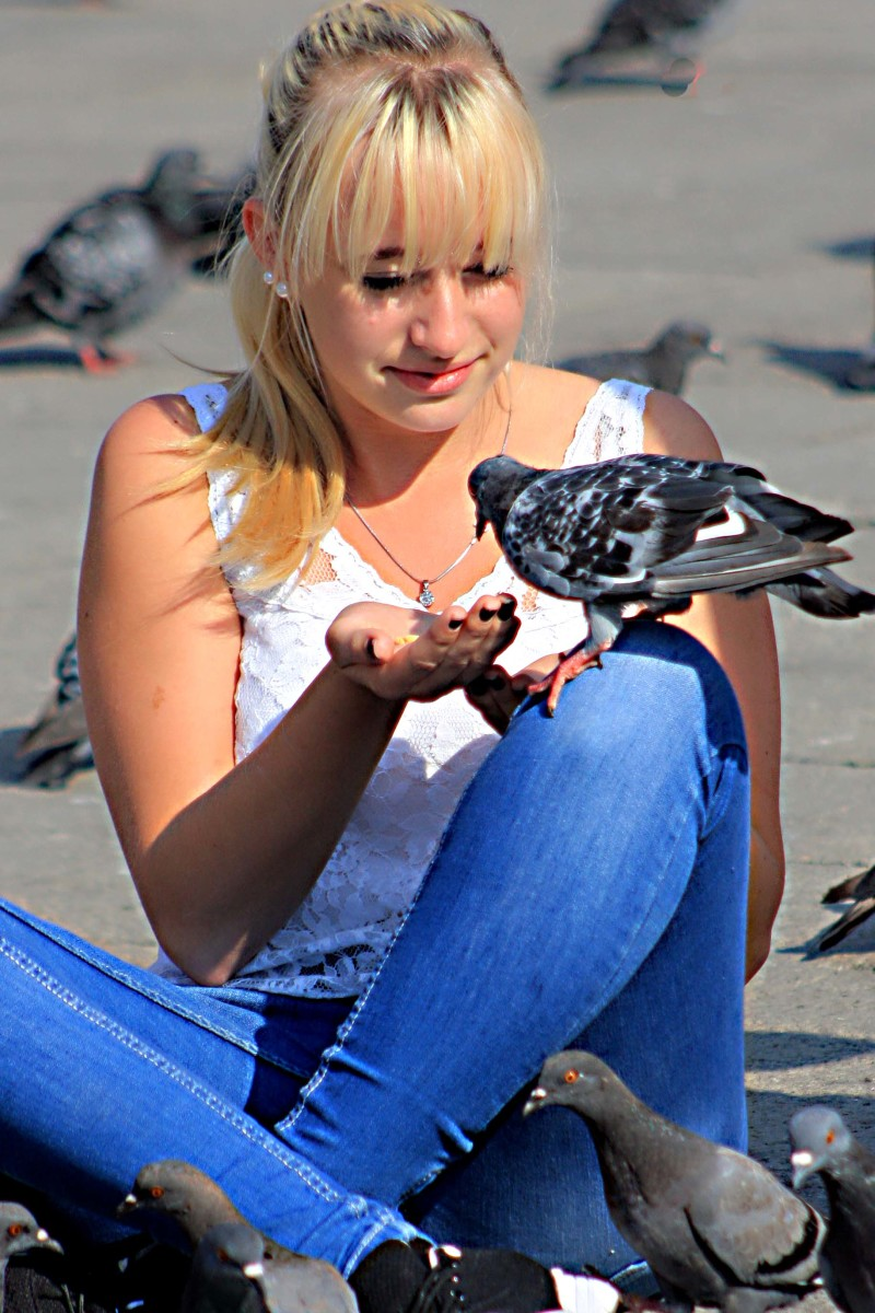 Feeding pigeons in the Piazza San Marco - not approved of by the council who want to clean up the Square, but still it goes on