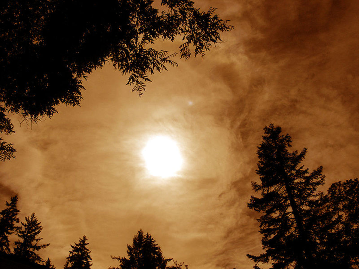 Moon, clouds and treetops.  Image courtesy Ordale and Wikimedia Commons.