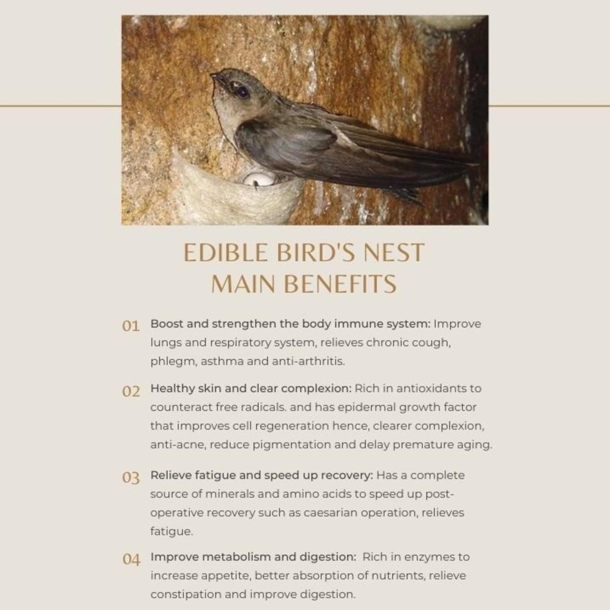 Main benefits of edible bird's nest