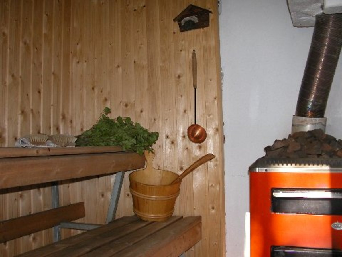 Inside the Sauna Room with a Birch Twitch