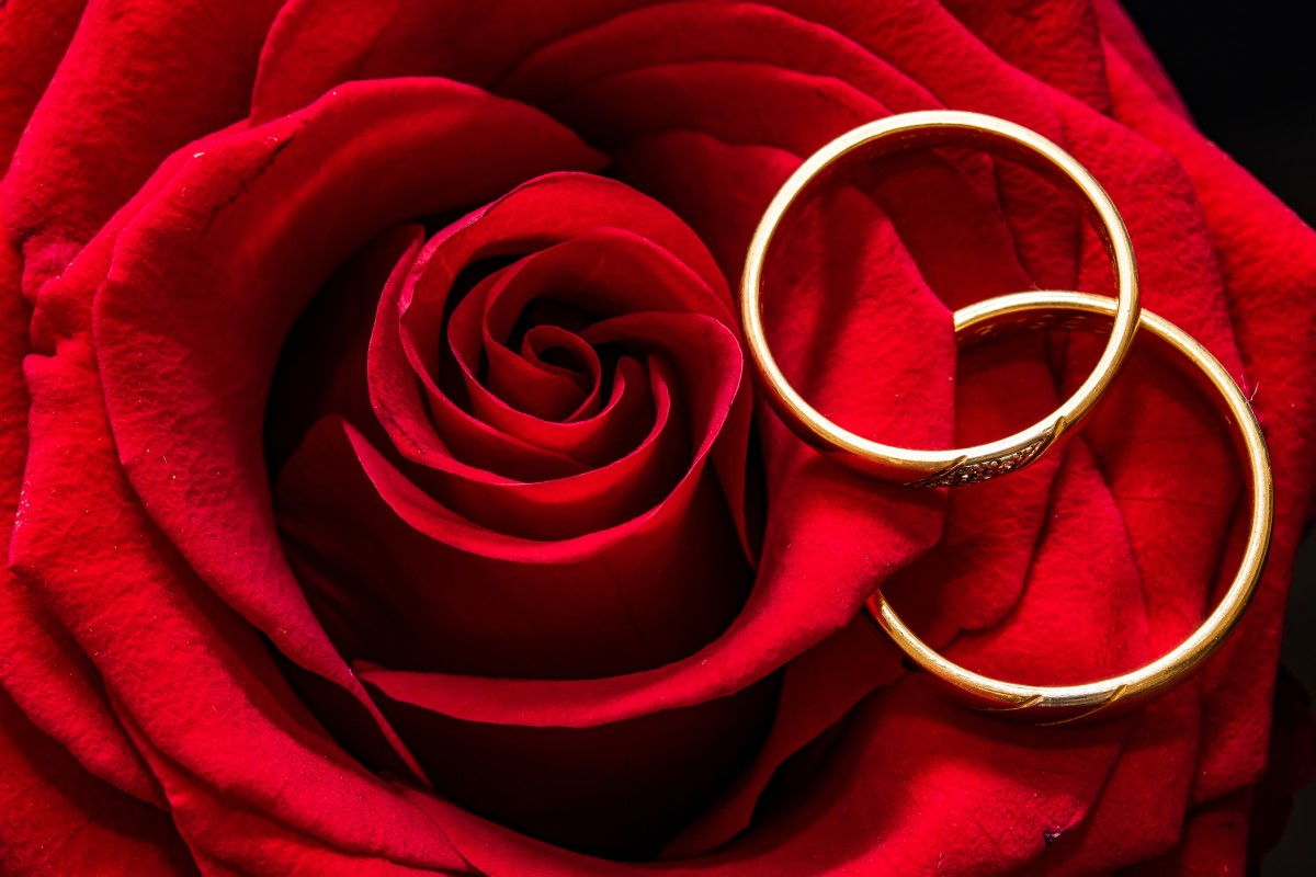 rose-themed-wedding