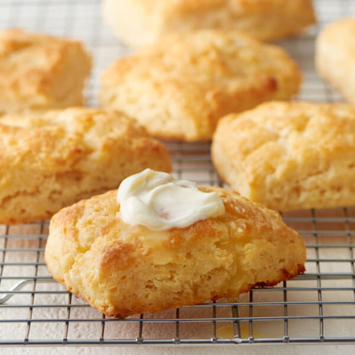 Put any of the foods seen on this hub into one of these cathead biscuits and man, what great eating.