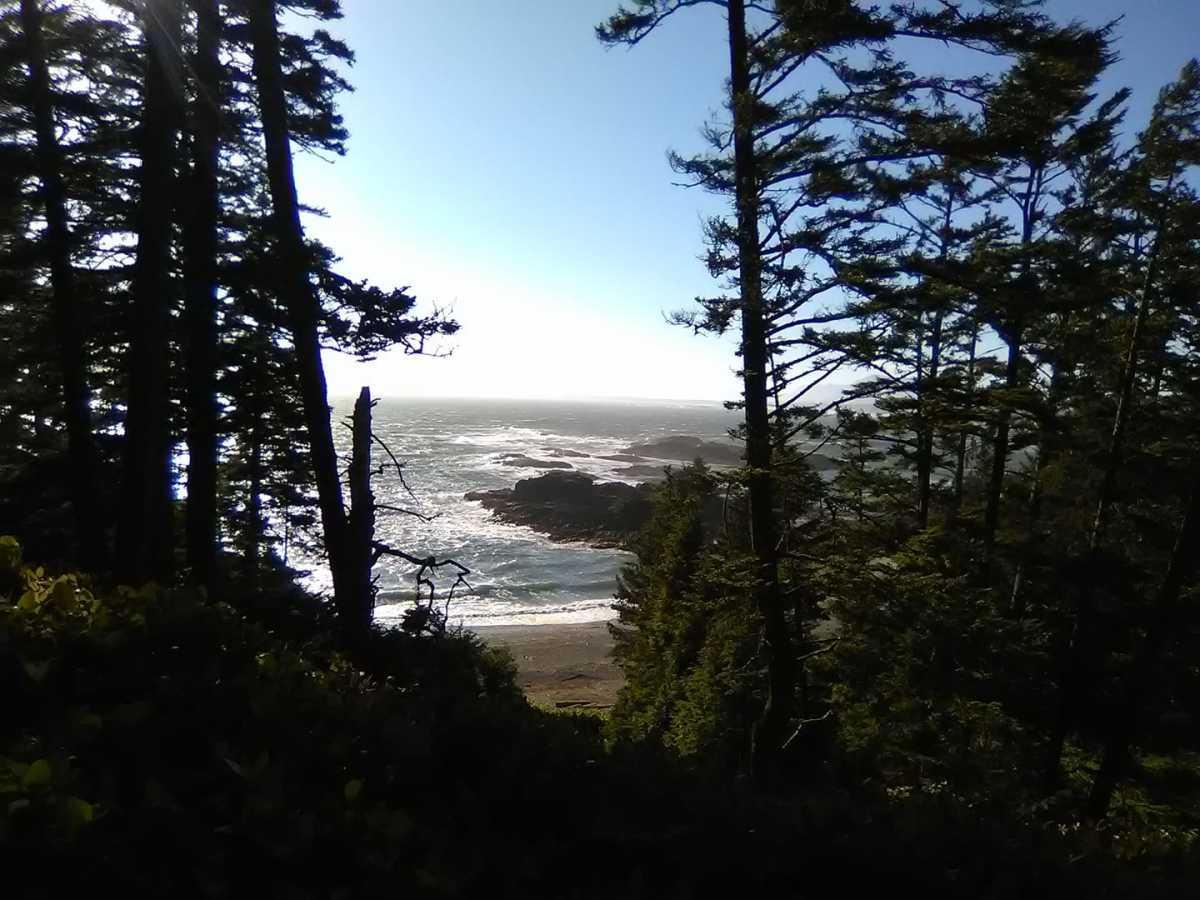 A viewpoint near Wickaninnish Beach.