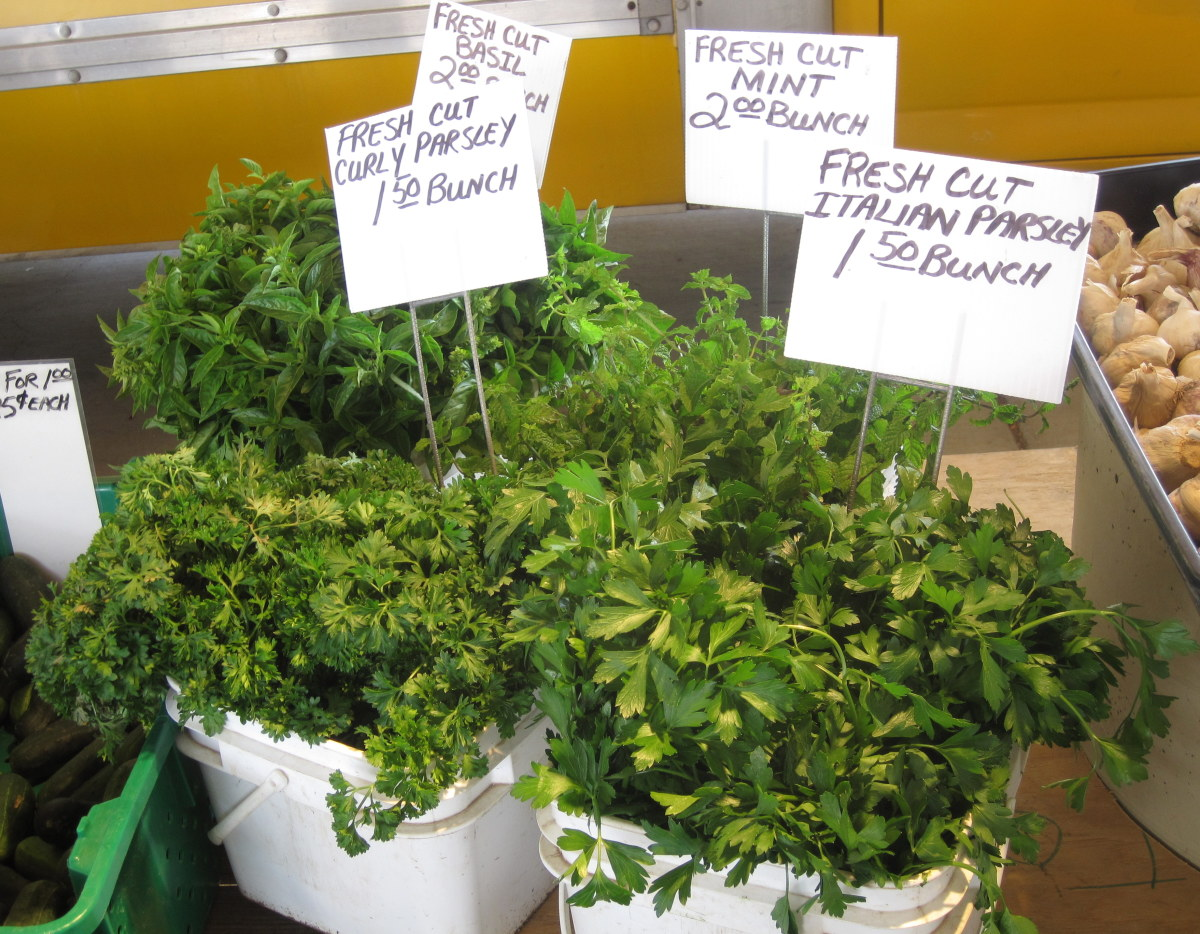 Look at those prices! Herbs at farmers markets can be a great deal.