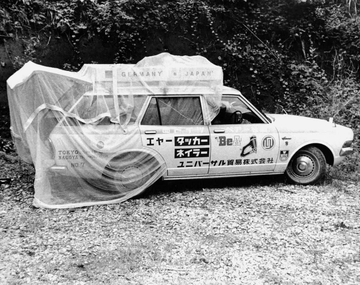 mosquito net Japan