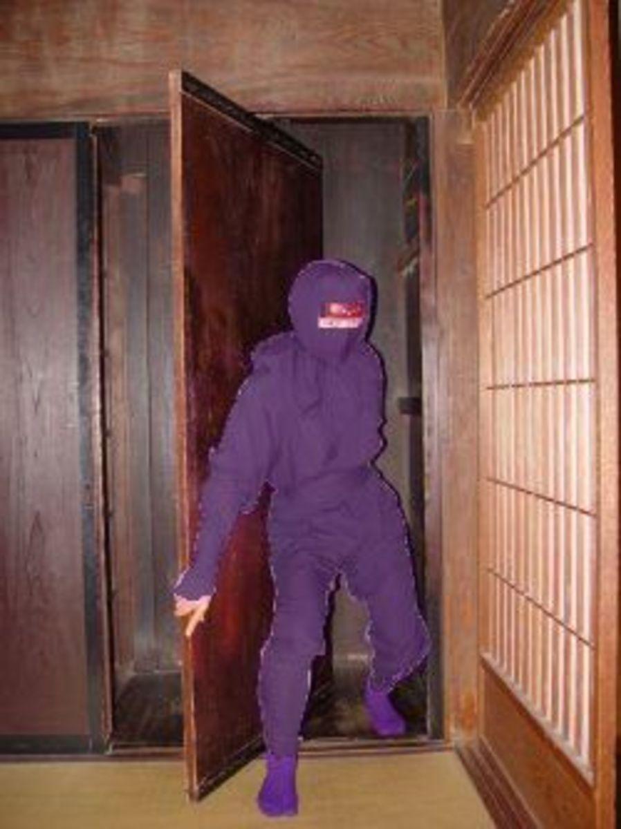 Secret doorway in Ninja House
