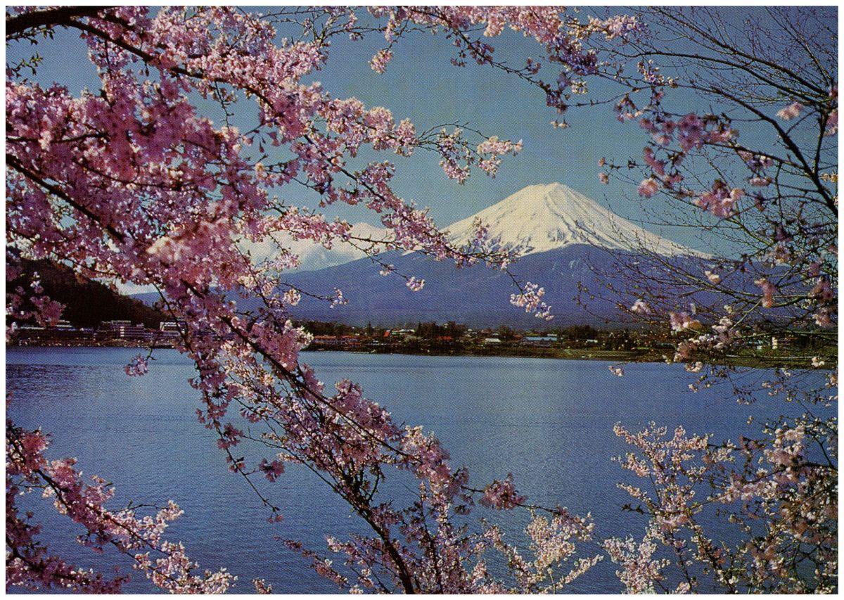 Mt Fuji Card