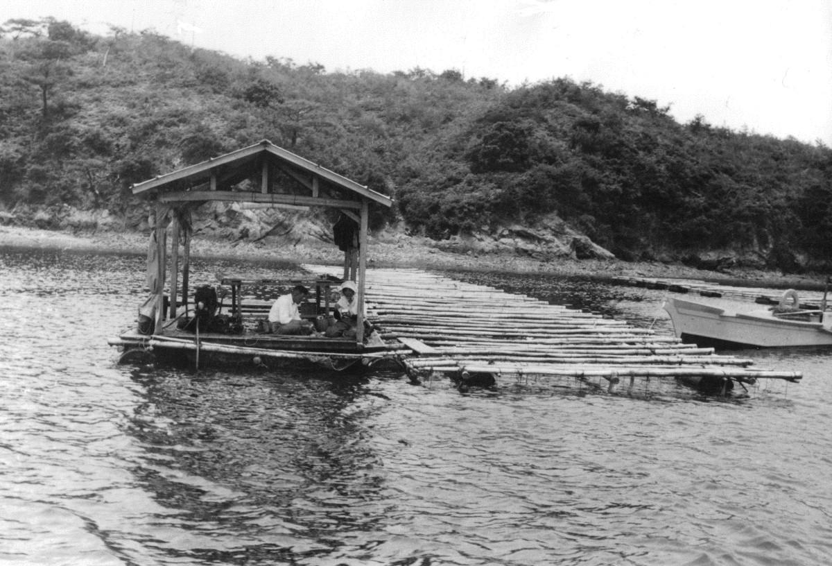 Pearling Platform