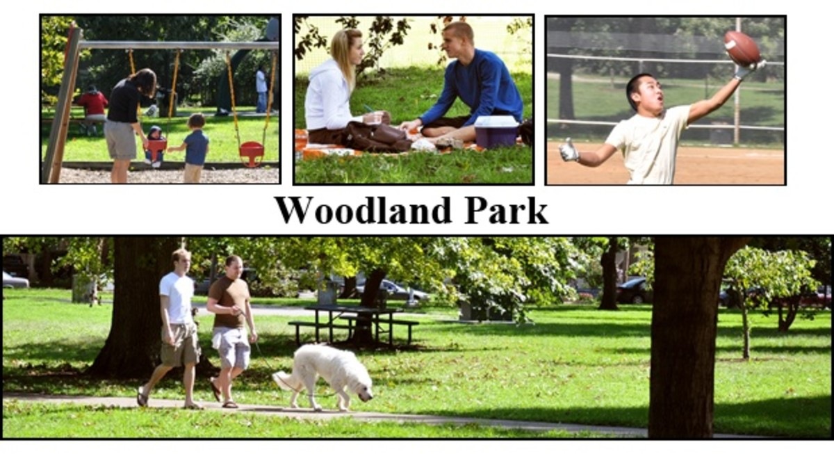 Things to Do at Woodland Park in Lexington, KY