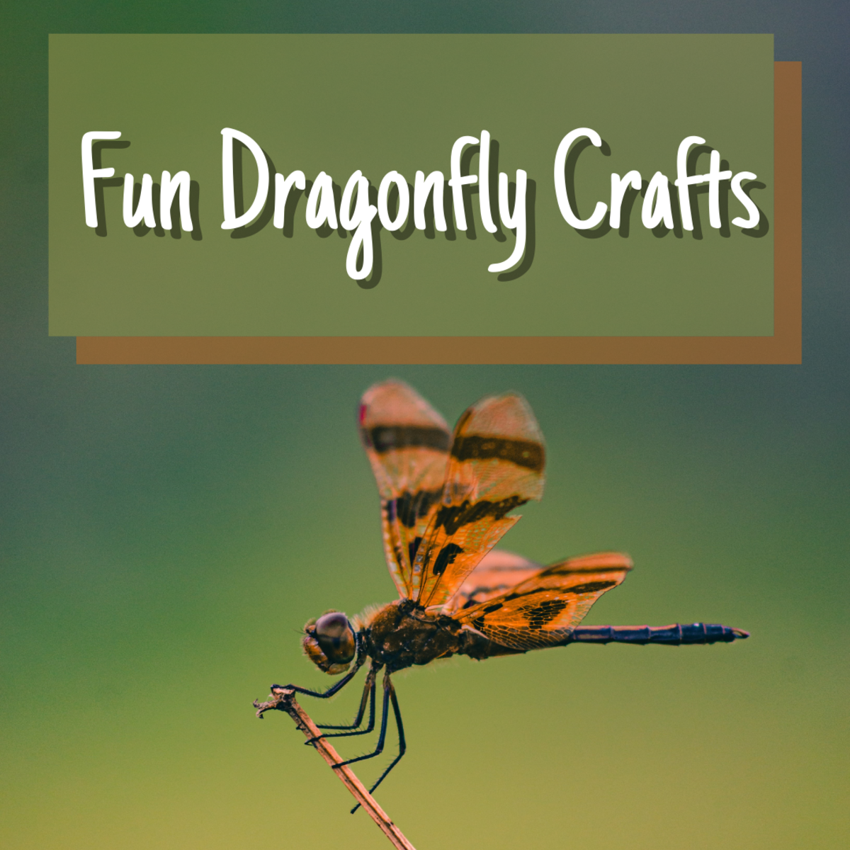 Learn how to make a variety of fun, easy dragonfly crafts for kids!