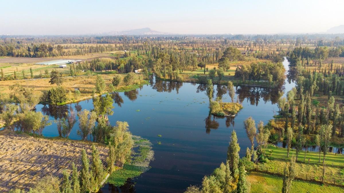 The lake complex of Xochimilco.