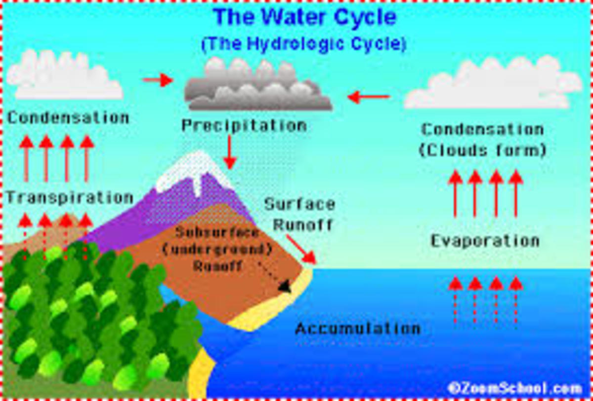 The water cycle is just a cycle that happens here on earth and it never ends, because the water is recycled again and again. Now in a parallel way the life forces of the universe can form a continuous cycle that never ends.