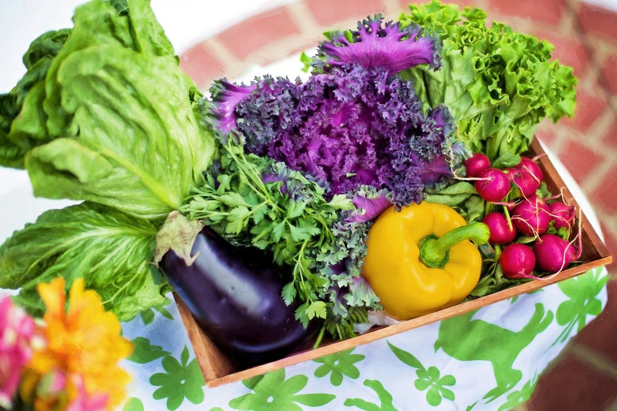 Growing a vegetable garden can help those with eating disorders heal their relationship with food.