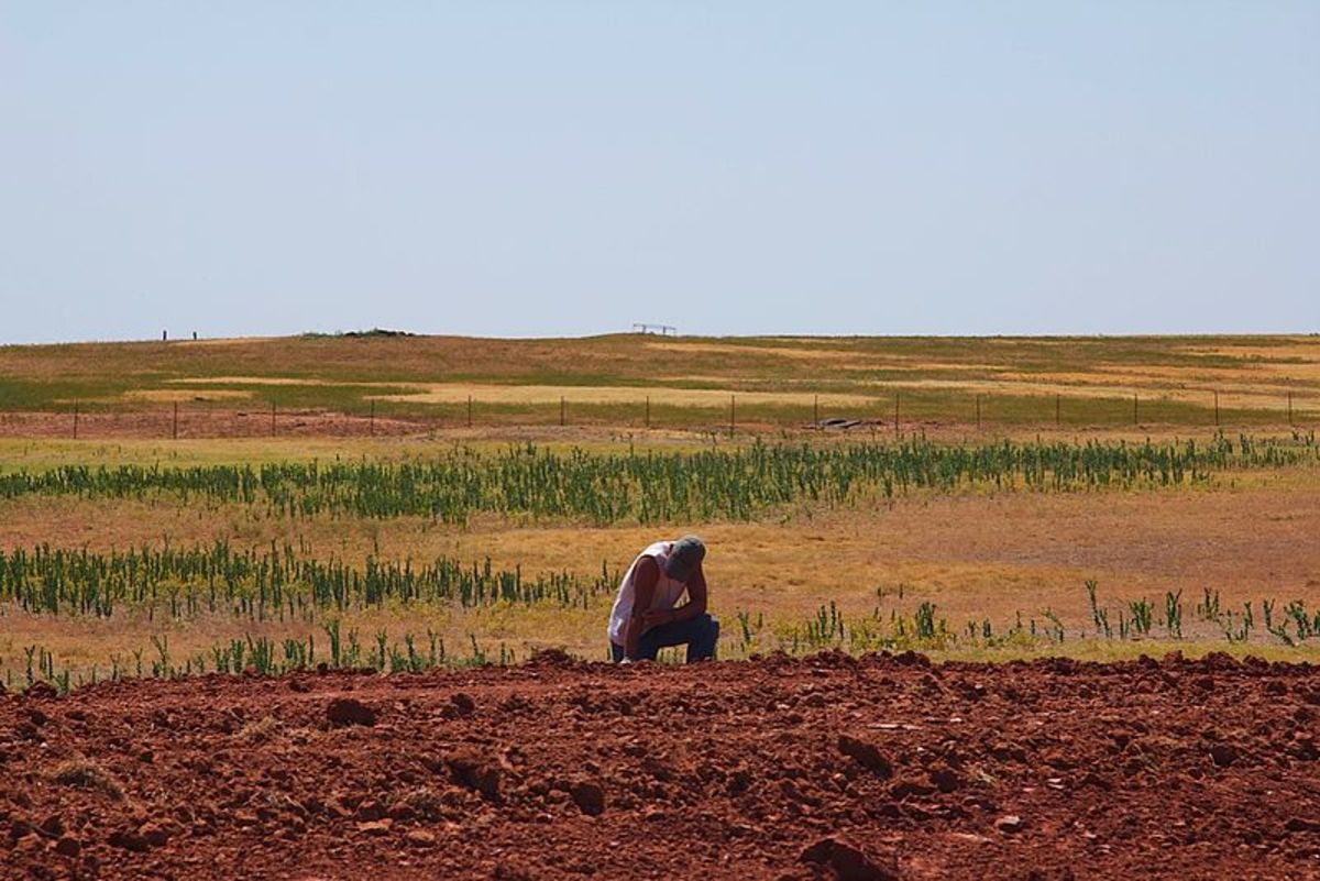 Parched ground in Middle America, 2012.  Image courtesy Al Jazeera English, Flickr, and Wikimedia Commons.