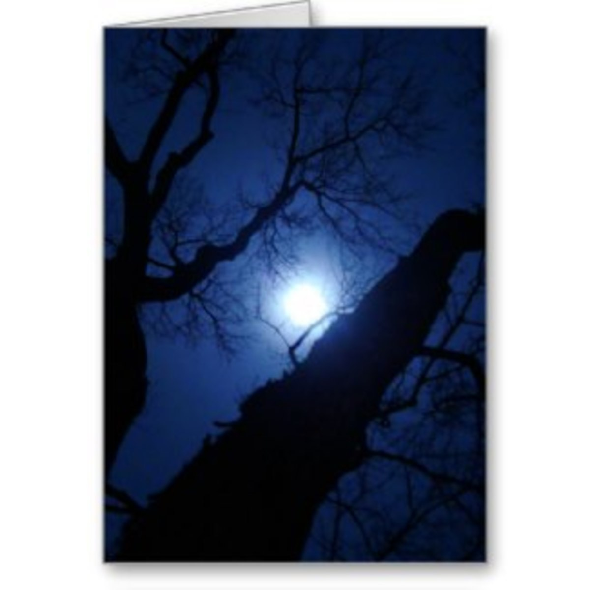 Midnight Moon card
