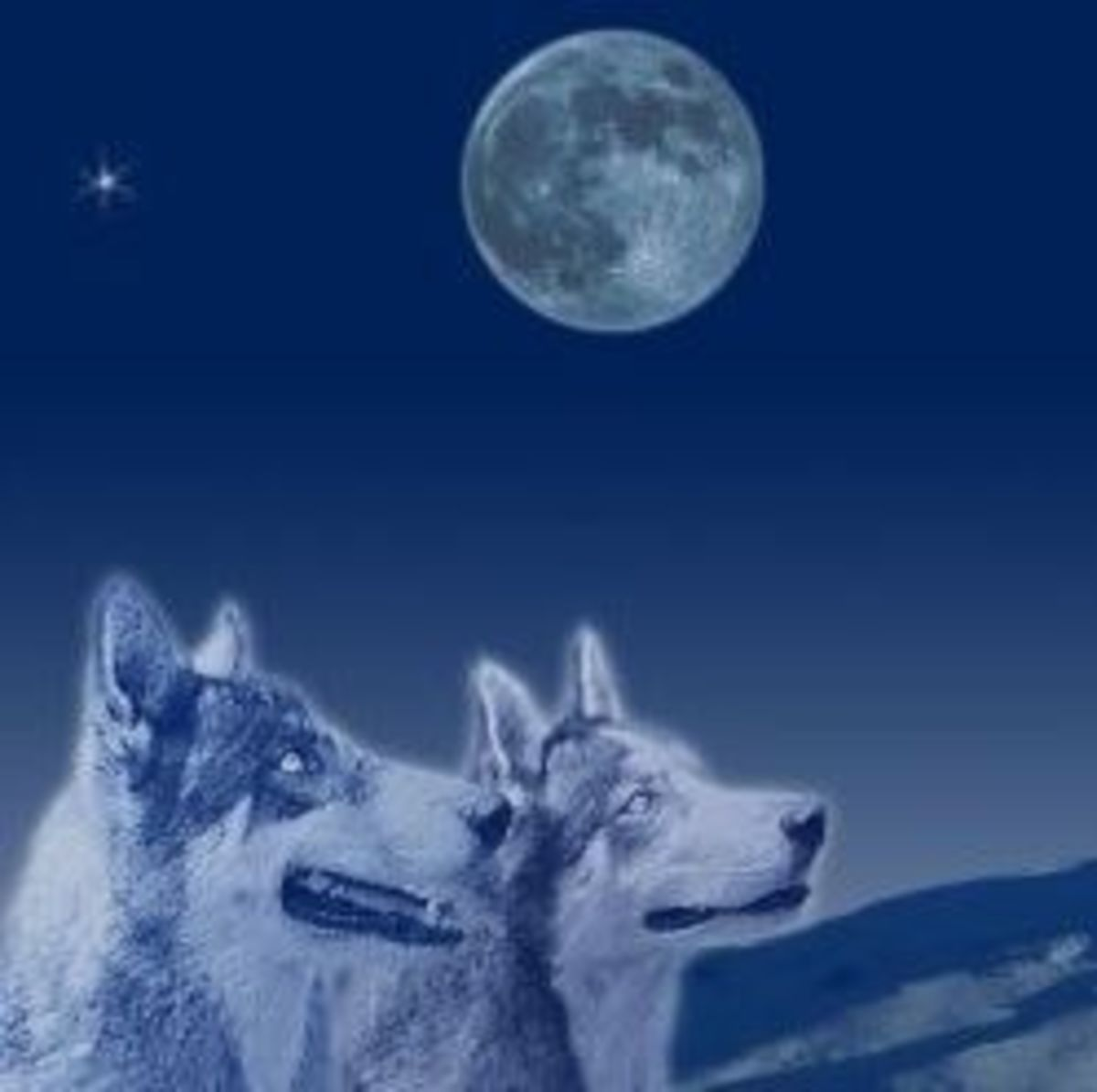 The Native Americans named a certain time of year after the wolf. Guess which one.