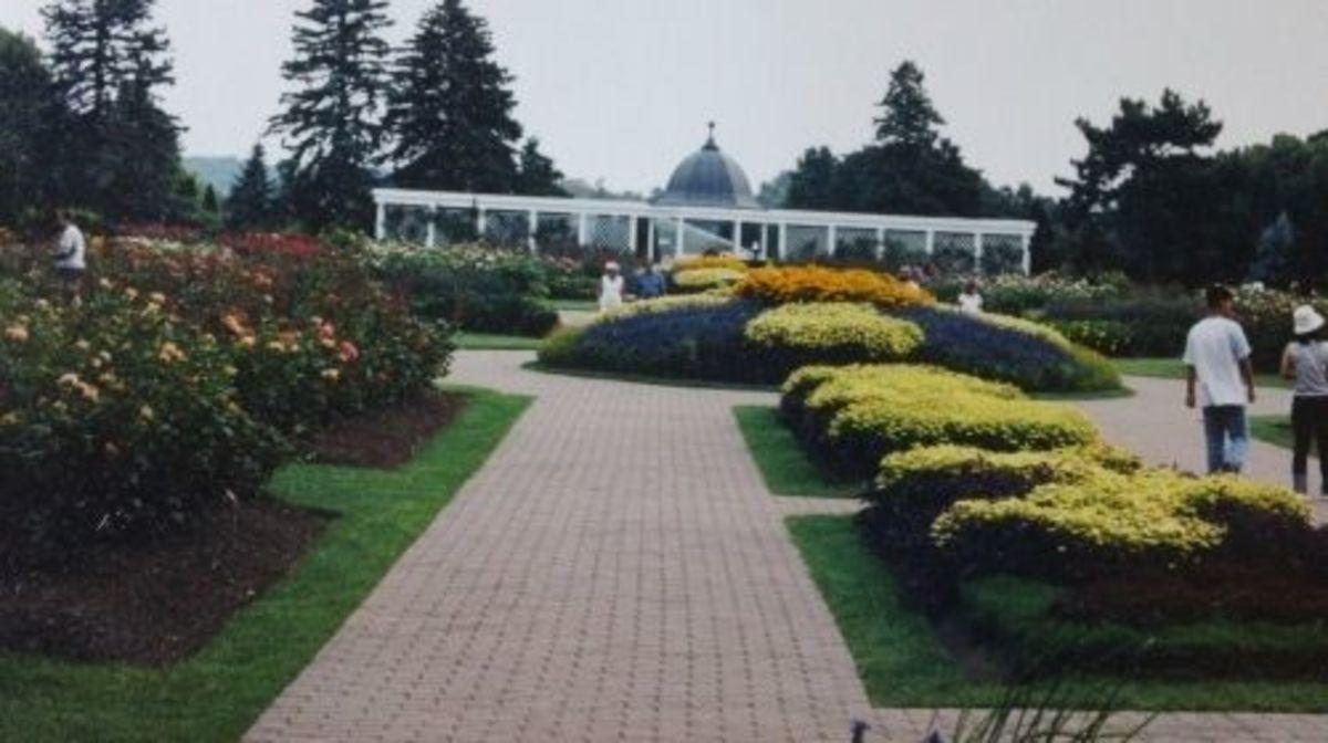 Niagara Parks Greenhouse -- a floral fantasy.