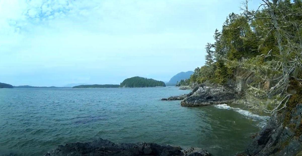 Tonquin Beach and Third Beach Near Tofino BC