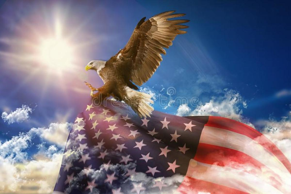 Our America the Beautiful, Shes Still Here