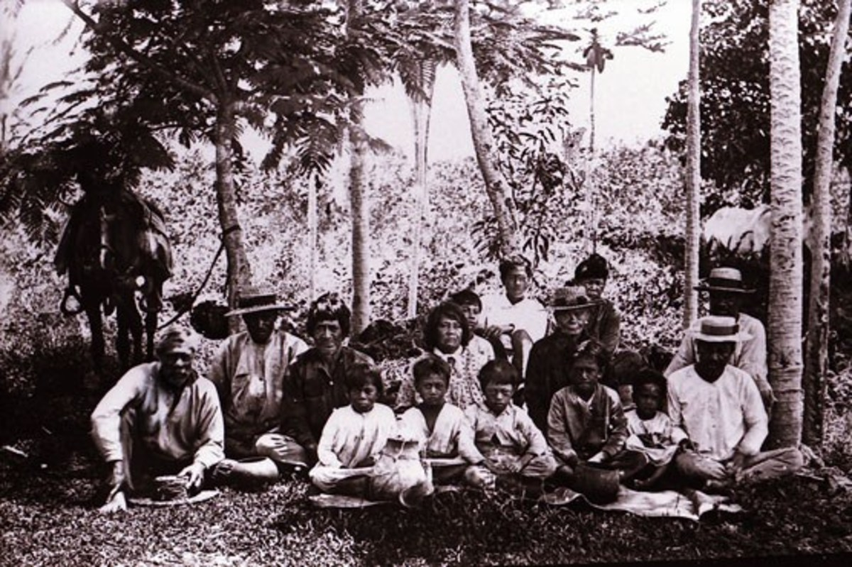 A group of Native Hawaiians by a road in the Puna District, Island of Hawai'i,  1895