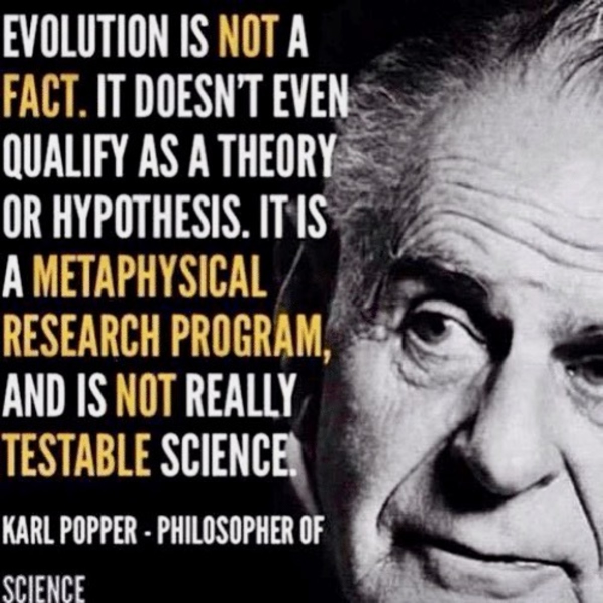 Karl Popper on the Theory of Evolution