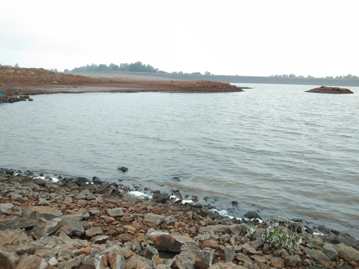 Calm Morning at the Dam - Vaiterna Dam