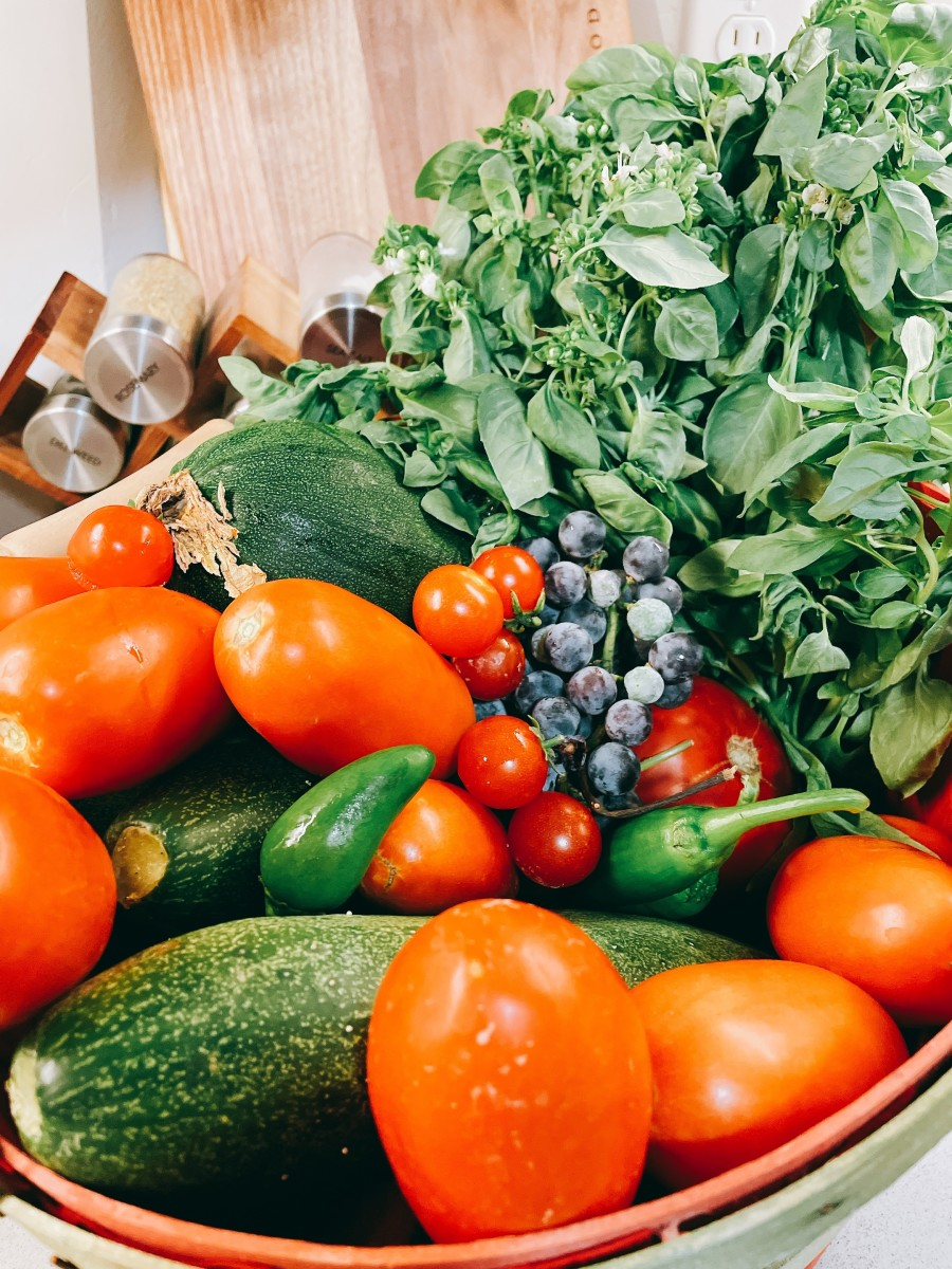 A bucket of full fresh and organic vegetables from the garden: zucchini, cucumber, green pepper, grapes, cherry tomatoes, and much more!
