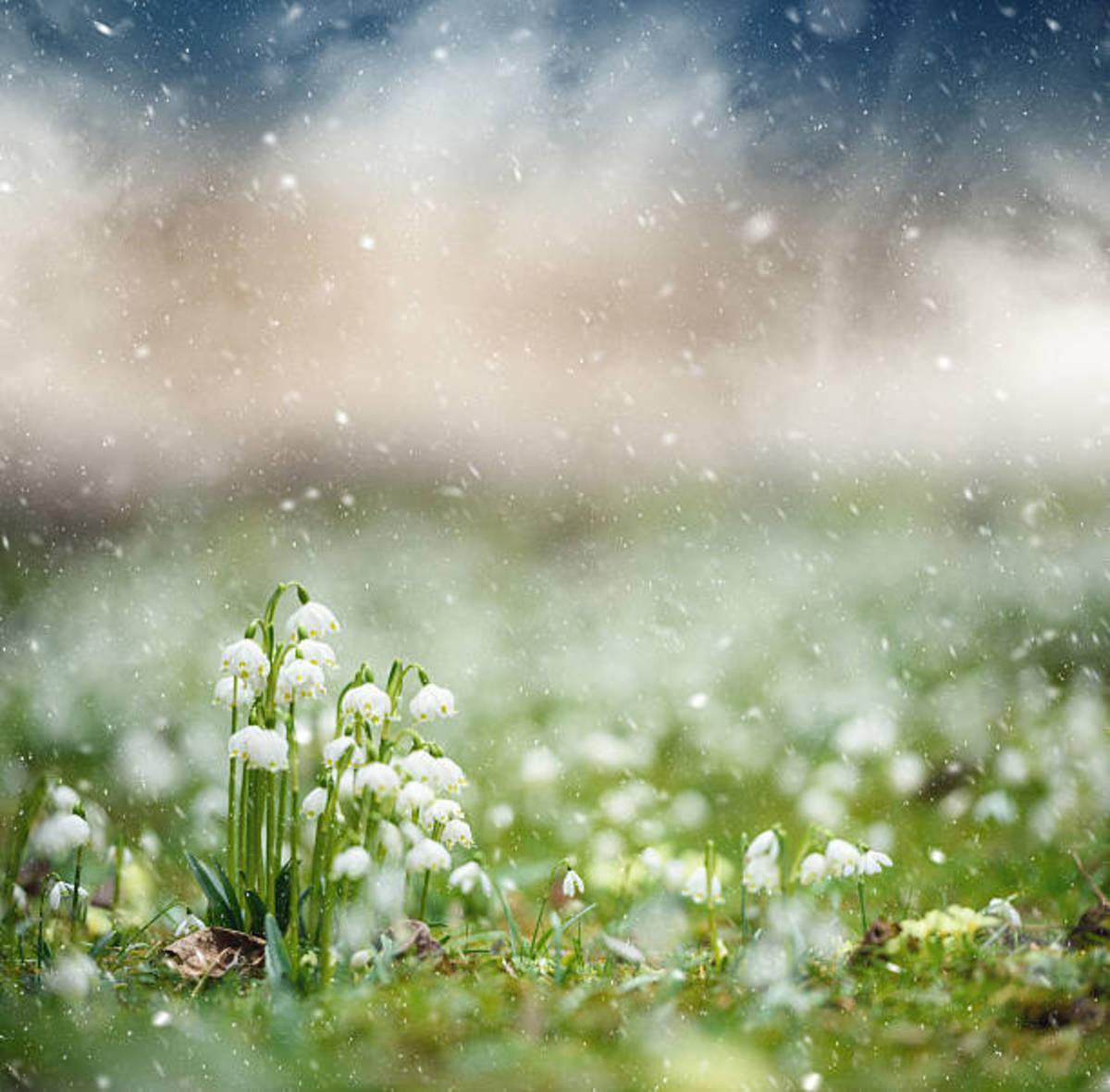when-the-dashing-rain-falls-down