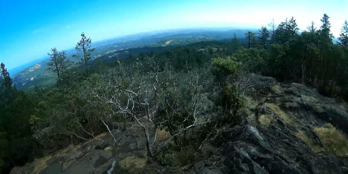 One of the viewpoints in Work Mountain Regional Park.