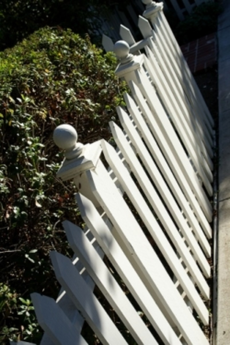 A Picket Fence In Pawpaw: A Novel for All Ages