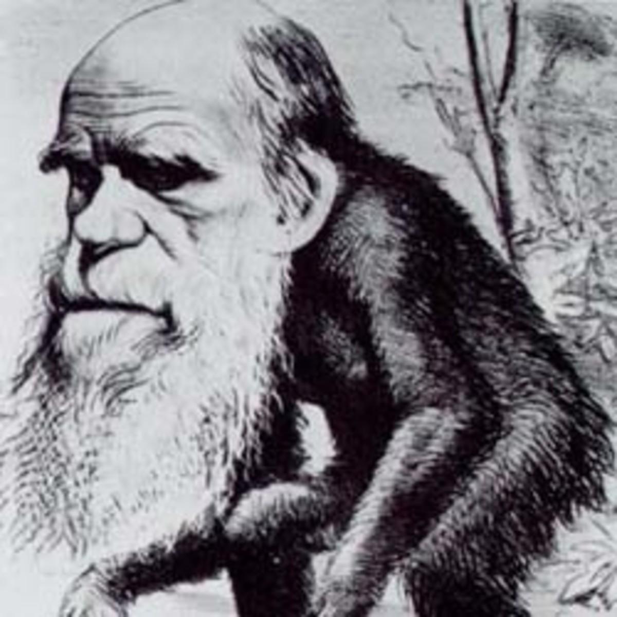 What Evolution Isn't