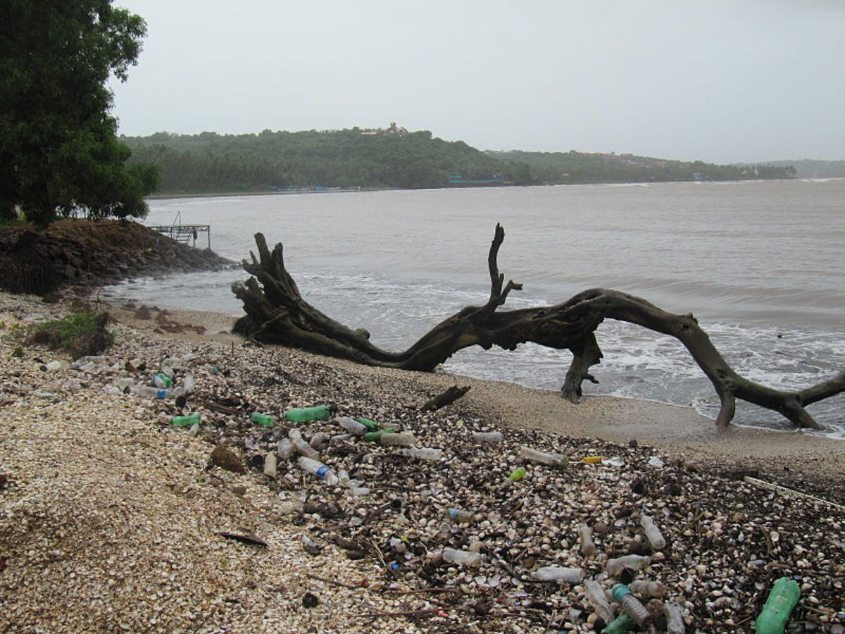 Plastic waste on an Indian beach gives the merest hint of the immense plastic waste gyres recirculating in both Atlantic and Pacific Oceans.  Image courtesy 'Hajj0 ms' & Wikimedia Commons.