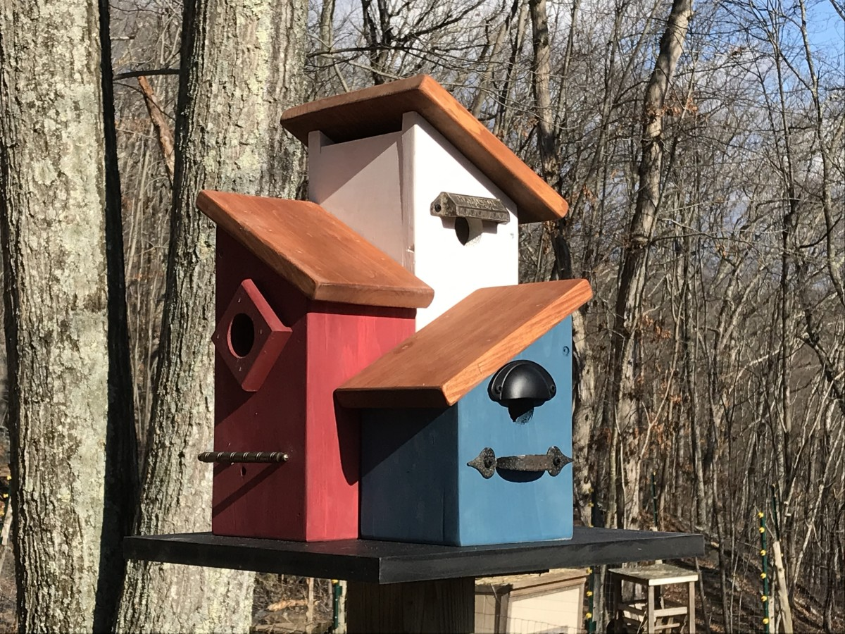This multi-family condo birdhouse is designed to meet the specific needs of cavity nesting birds such as wrens, chickadees and bluebirds.