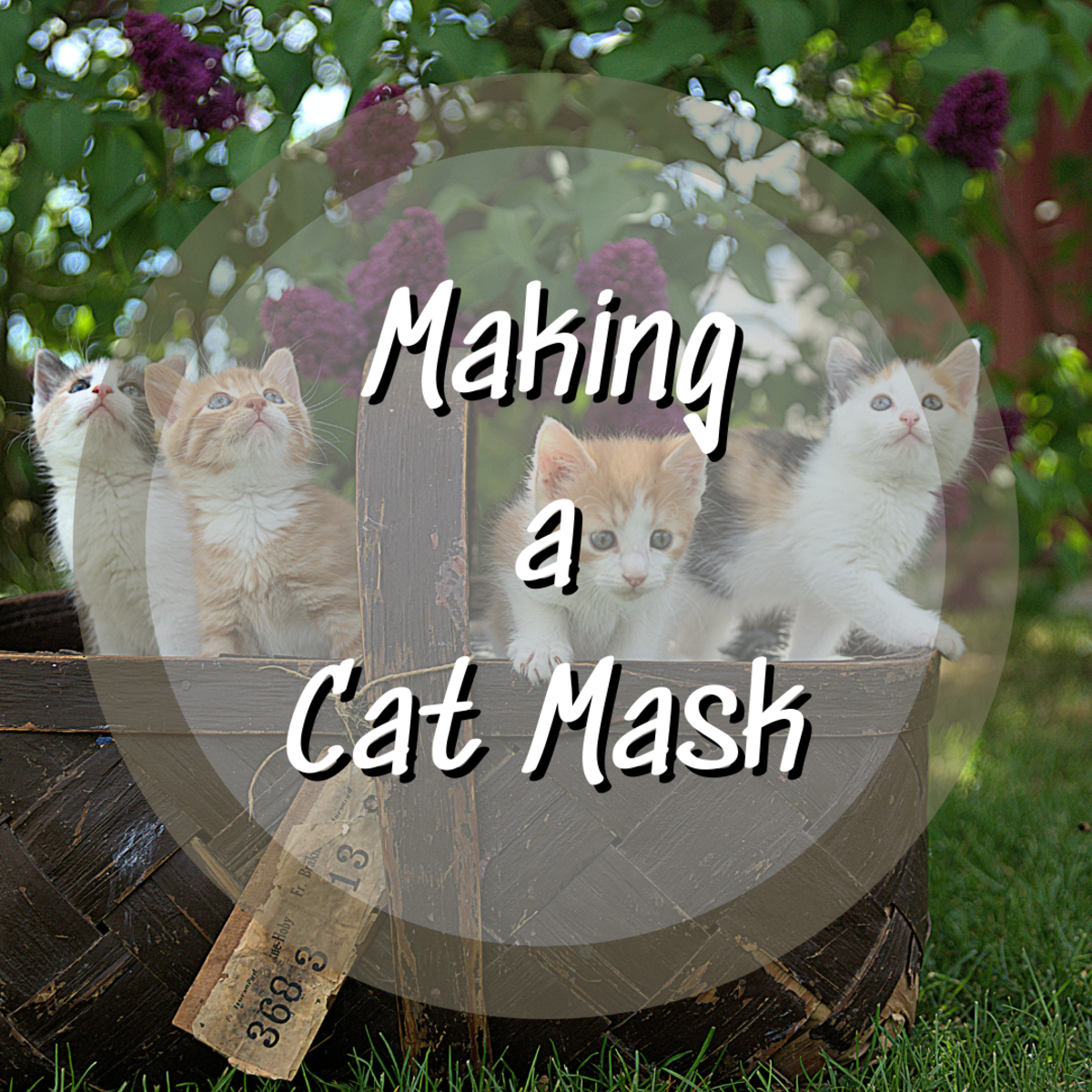 Learn how to make a cat mask easily and quickly! A couple other masks are included as a bonus!