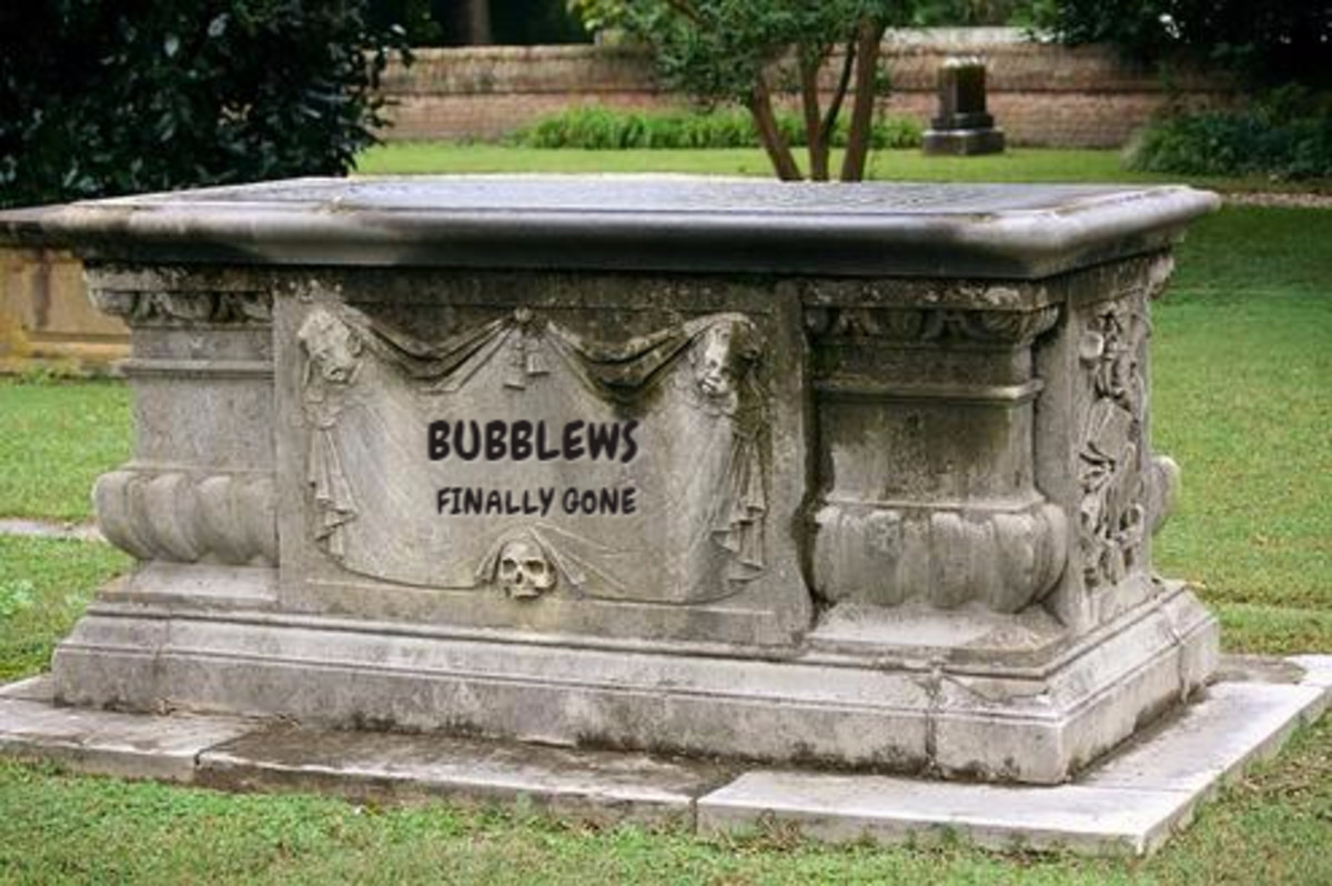 What Can We Learn From the Fall of Bubblews?