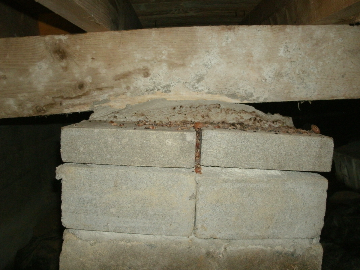 cement-foundations-literally