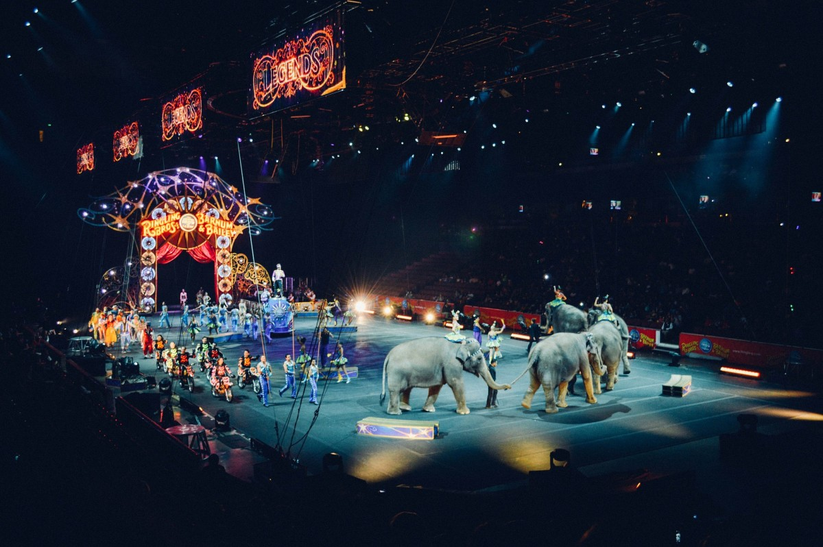 The Circus: Image by Free-Photos from Pixabay