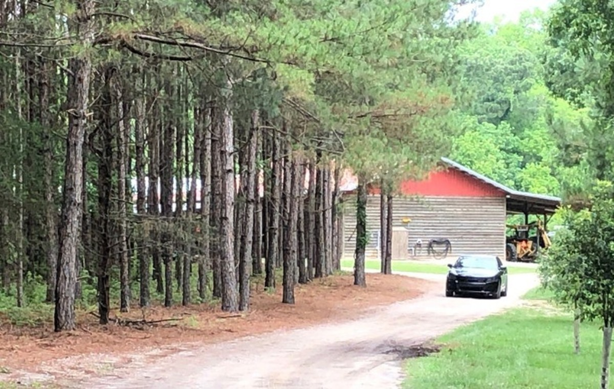 The area on the Murdaugh's property where Maggie and Paul were found on June 7, 2021. Photo courtesy of the Augusta Chronicle.