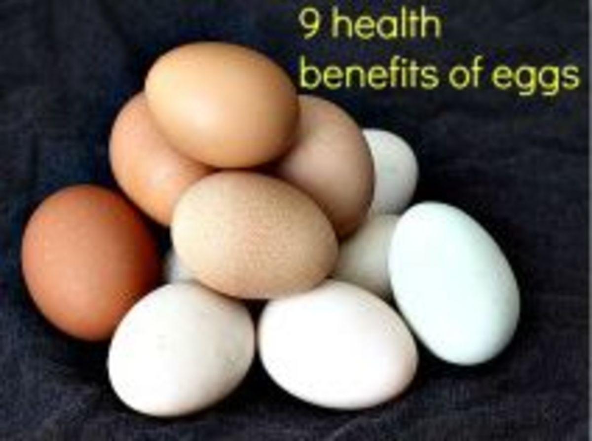9 Health Benefits Of Eggs
