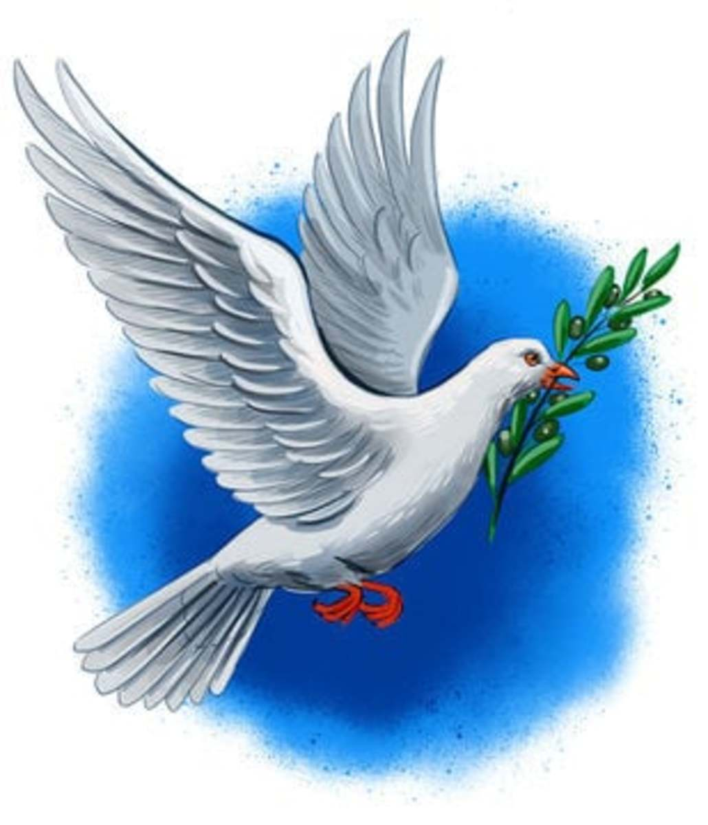 why-so-many-birds-are-mentioned-in-the-bible