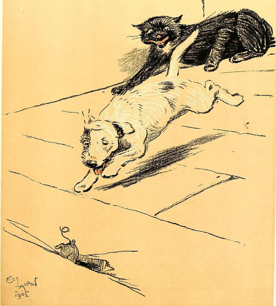 A Dog Day or Angel in the House, 1902