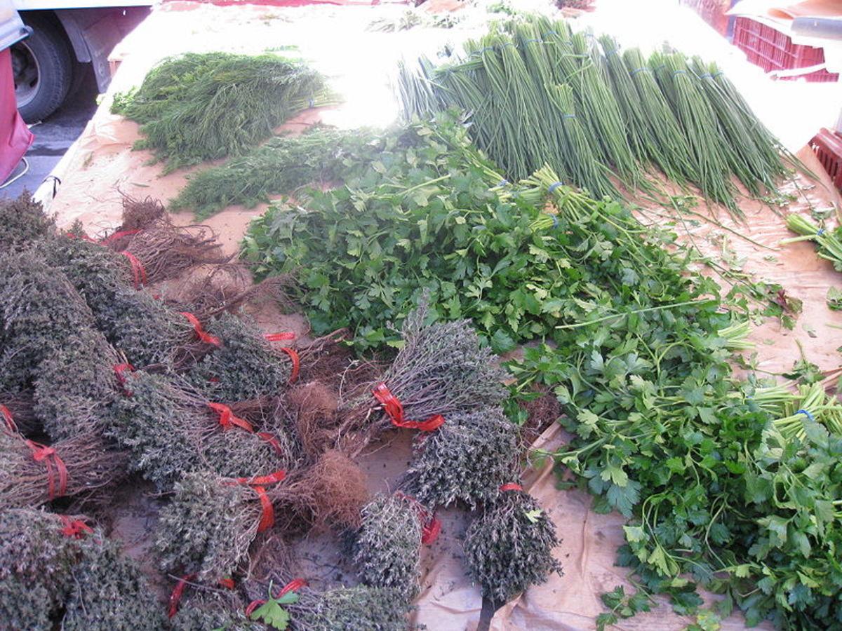 Various dried herbs