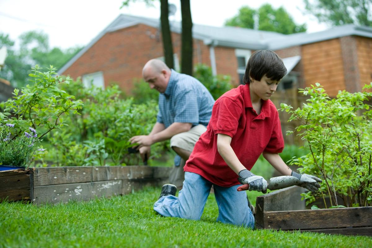 A father and son gardening together. An MSG fertilizer could easily be incorporated into their home garden to help grow healthy, vibrant plants.