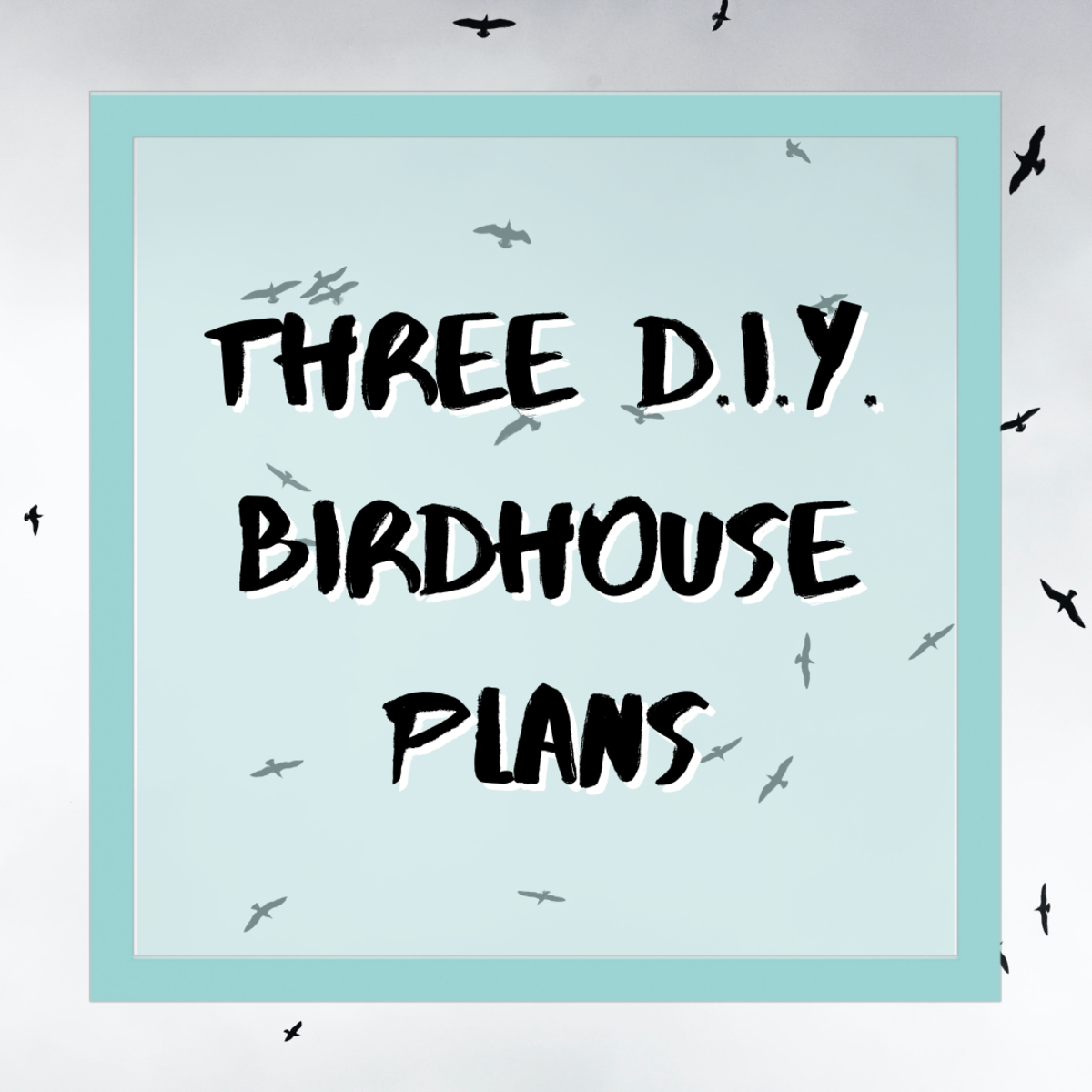 These bird house plans will help you create three different DIY birdhouses!