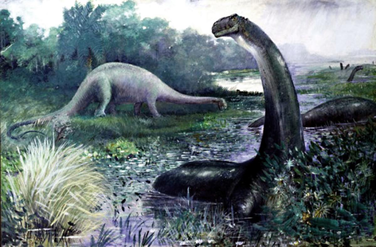 dinosaursprehistoriclife-hubpages-greensleeves