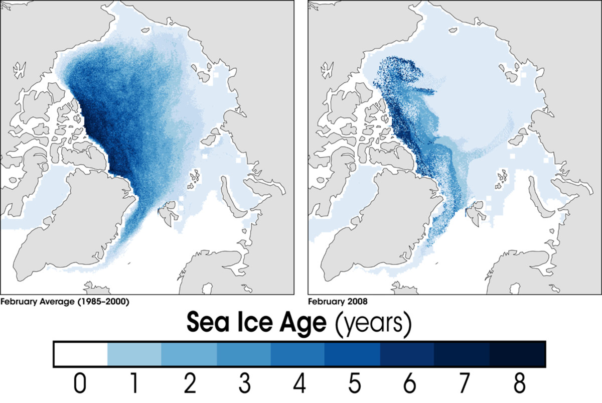 Image courtesy National Snow And Ice Data Center (NSIDC) & Wikimedia Commons.