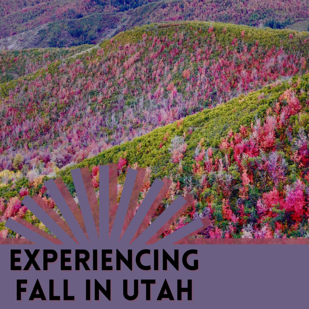 Best spots in Utah for fall foliage