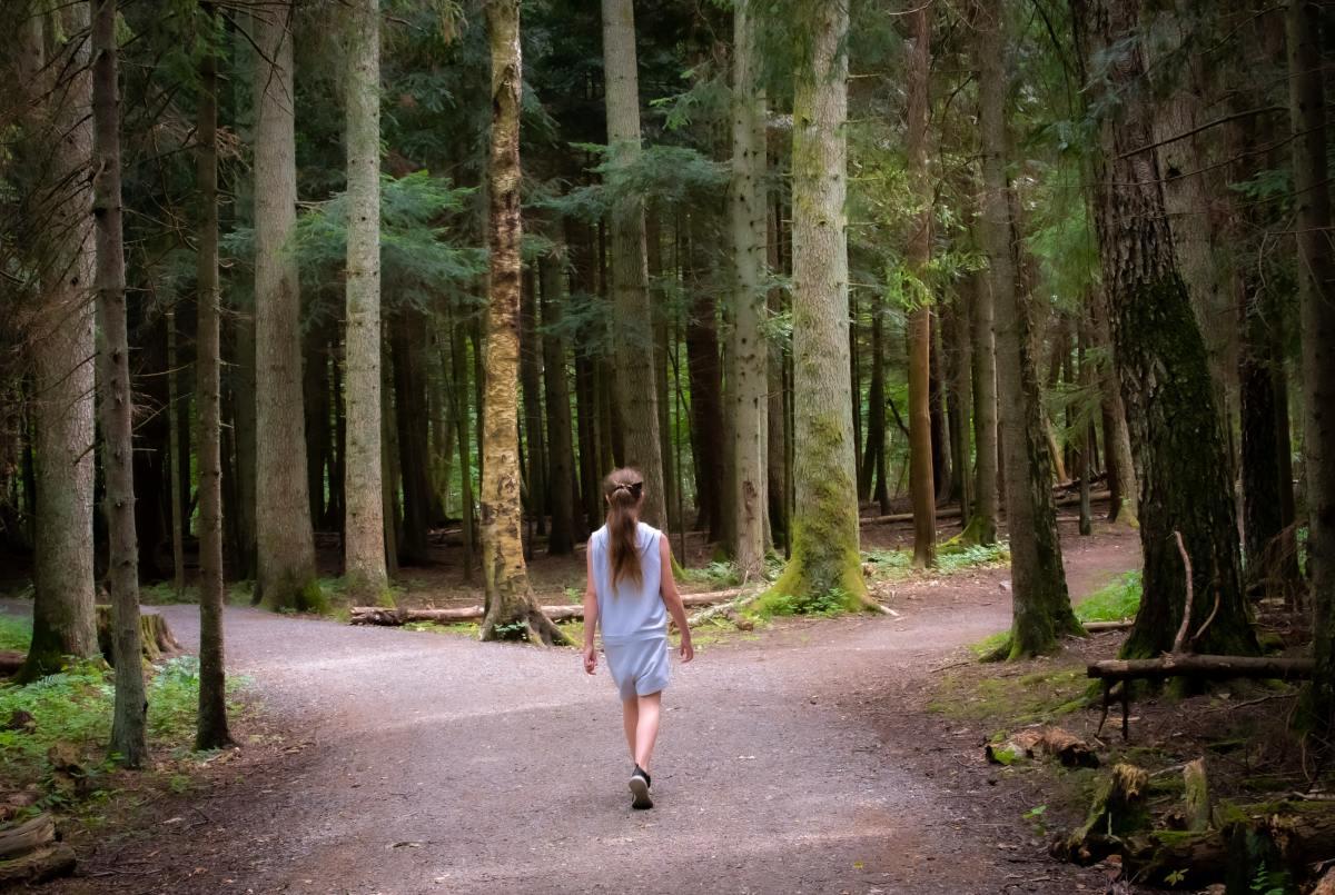 Thy Word: The Narrow Path
