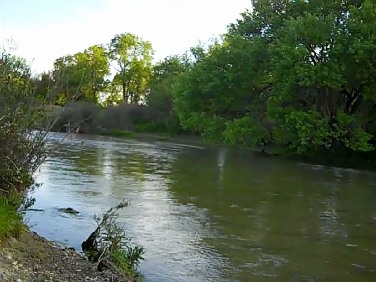 The Salinas River is most likely to be seen from February to June, depending upon the amount of rain that falls in  North San Luis Obispo County