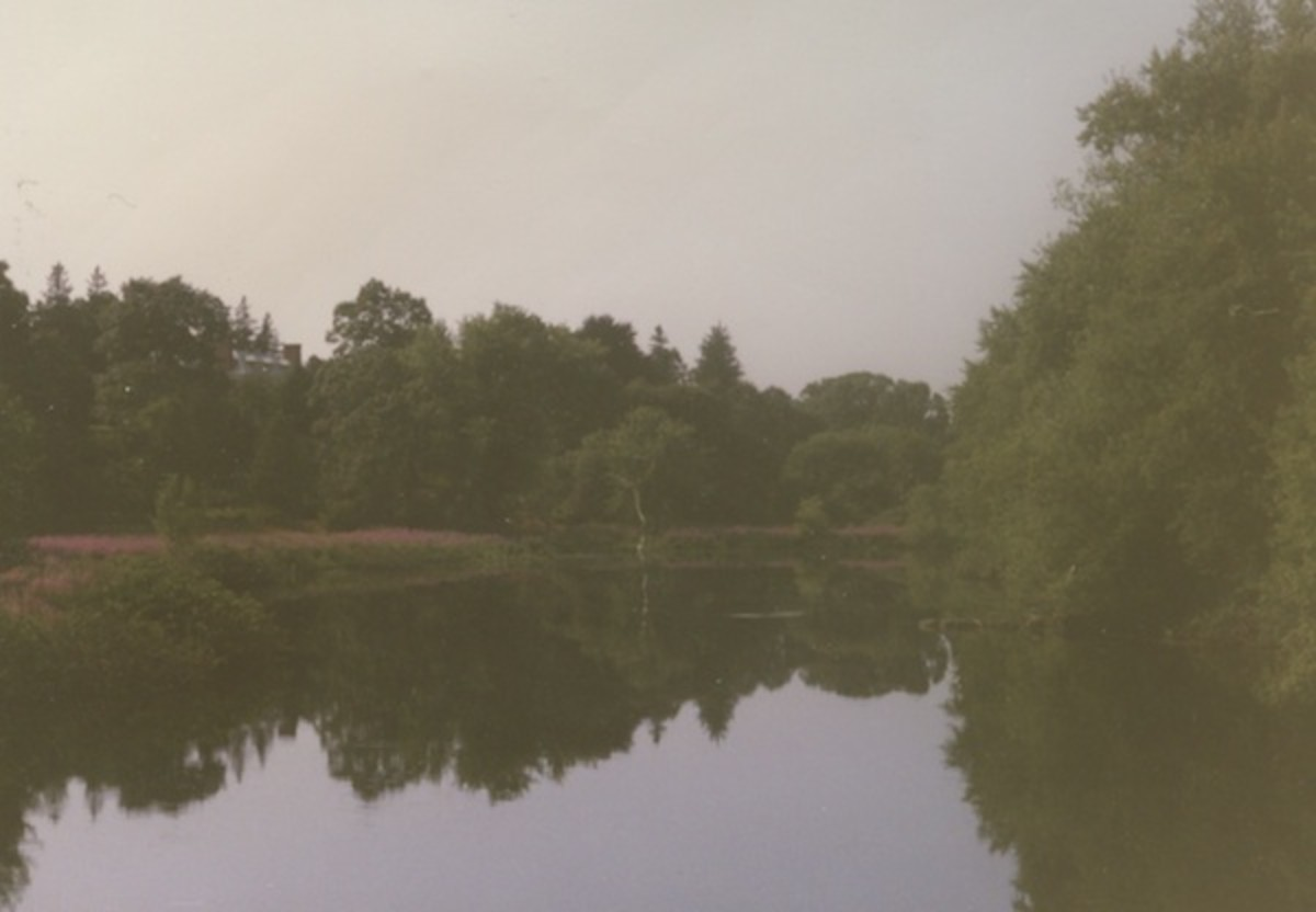 This is the Concord River near the famous North Bridge in Minute Man National Park
